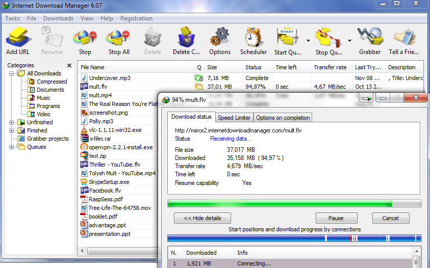 Internet Download Manager for Chrome